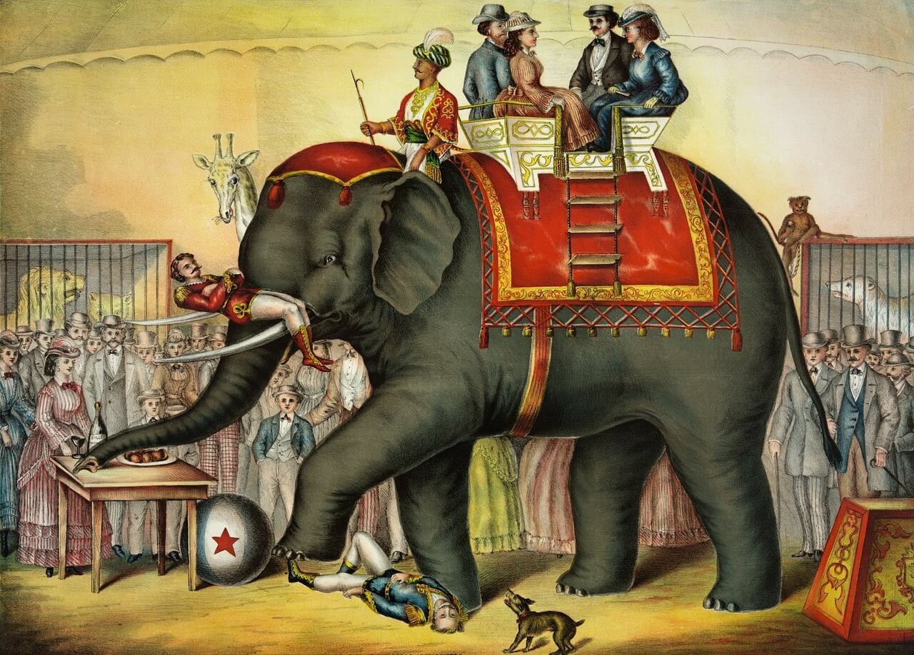 Vintage cartoon circus elephant