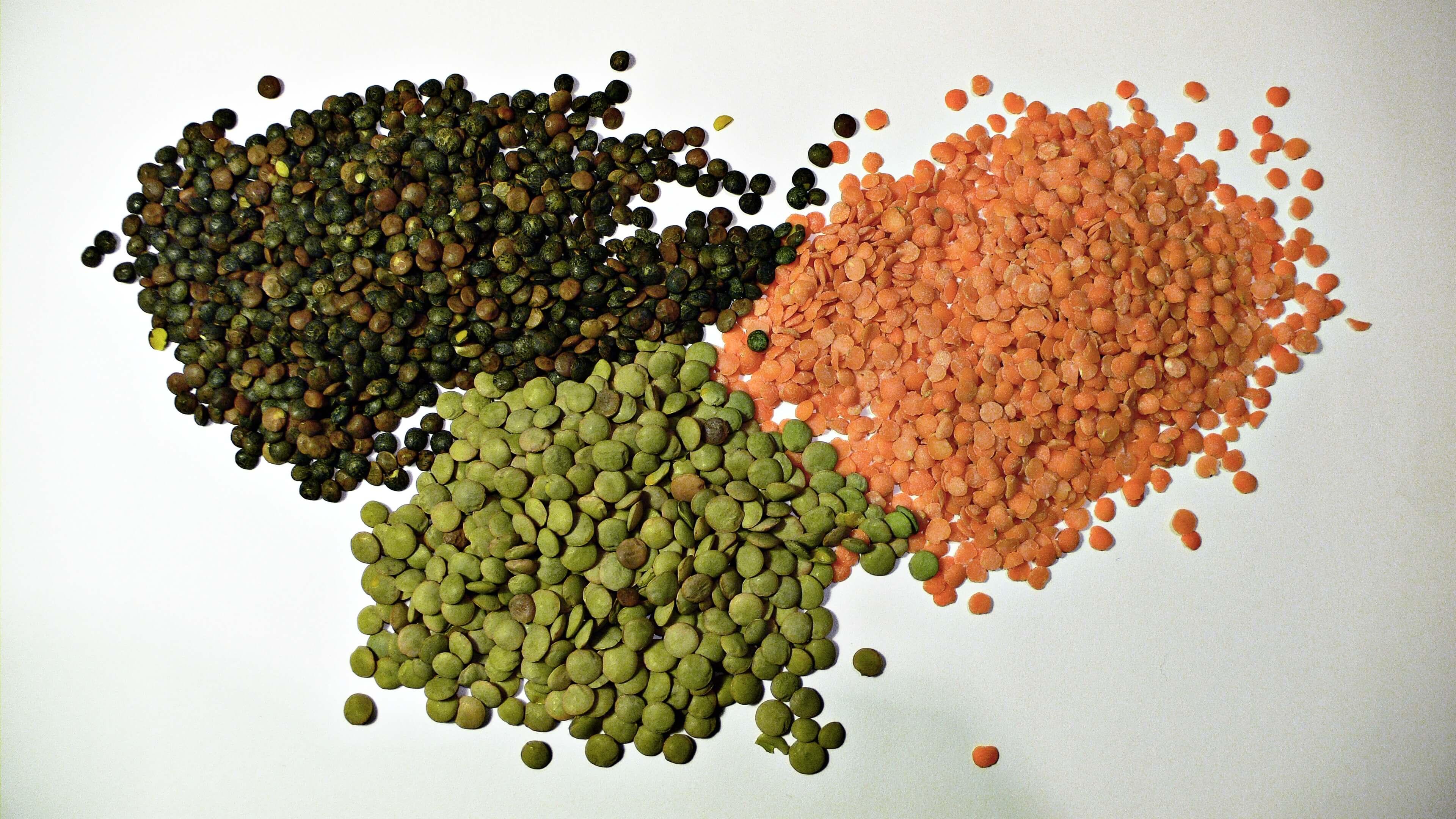 Vegan Protein Rich Foods