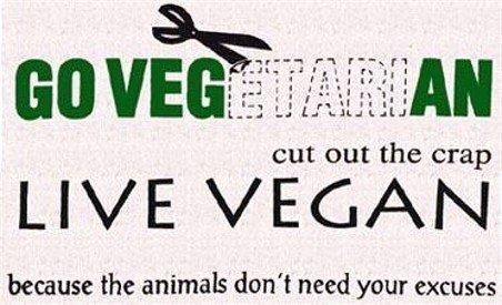 type of vegan