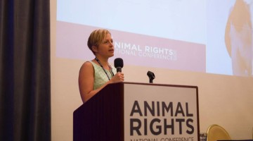 Vegan Inspiration From the Animal Rights Conference 2015