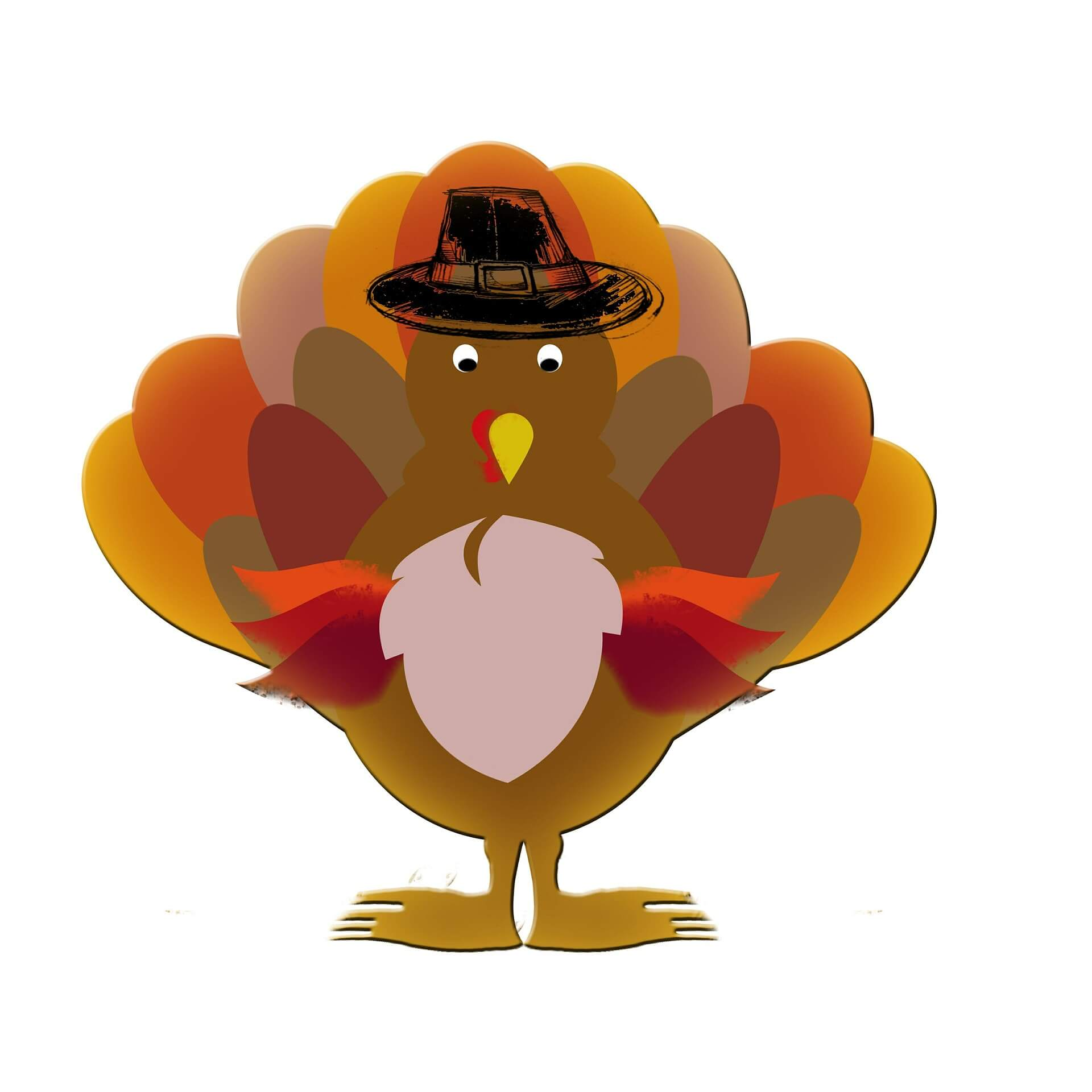 Give Thanks: A Thanksgiving for Turkeys - Vegaprocity