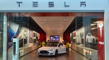 Tesla Embraces the Vegan Market