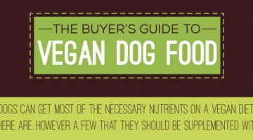Your Vegan Dog Food Shopping Guide