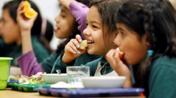 Back To School Tips For Vegan Kids
